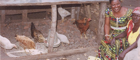Las beneficiarias del proyecto cuidan sus gallinas